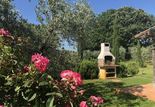 Appartamento a Cecina - Casa Rosina Toscana Tour