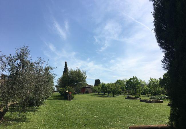 Casa a Bibbona - Casina Riccardo tra gli Ulivi a Bibbona
