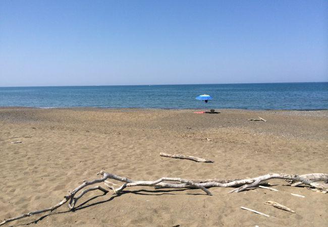 Appartamento a Bibbona - Podere Livrone con piscina 4 km dal mare d