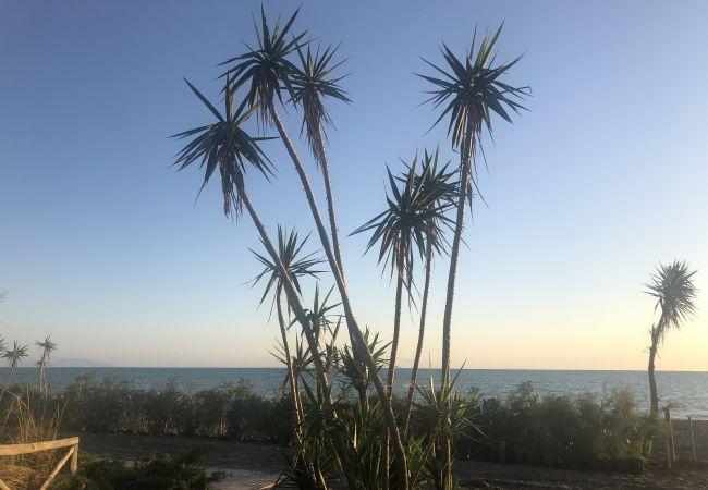 Appartamento a Bibbona - Piscina, 3 vani, giardino recintato 4 km dal mare