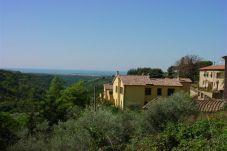 Appartamento a Montescudaio - Affitto Appartamento bilocale sole...