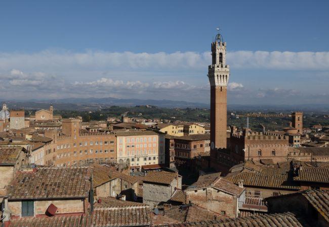 Agriturismo a Ponteginori - Agriturismo Alto 8 Toscana Tour