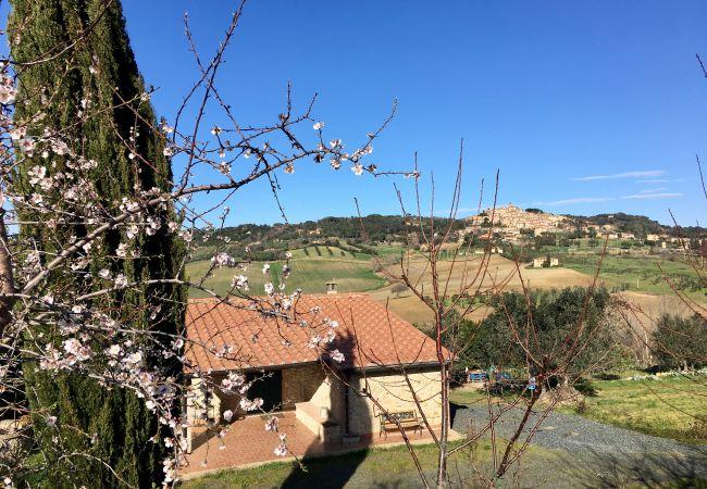 Casa a Casale Marittimo - Casa delle Conchiglie Wi-Fi Casale Marittimo