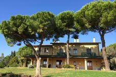 Appartamento a Casale Marittimo - cmt 303 Appartamento Marrone