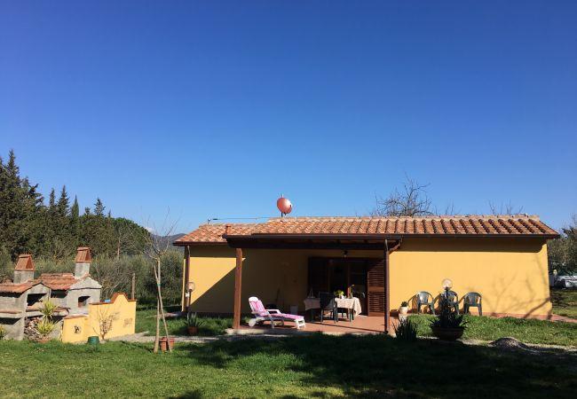 Casa a Montescudaio - Casina Buon Risveglio con giardino recintato