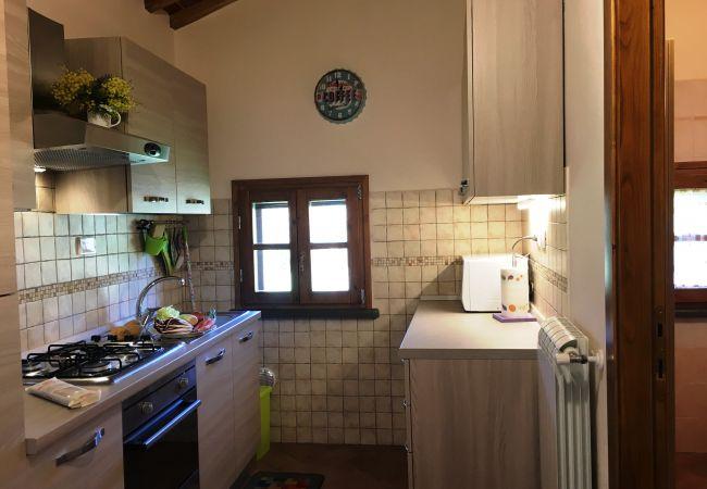 Casa a Montescudaio - Casina Buon Risveglio Toscana Tour