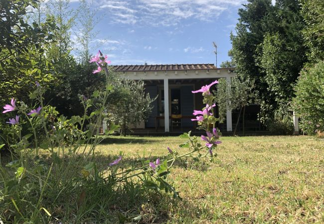 Casa a Cecina - Casa Daria Giardino Recintato Toscana Tour