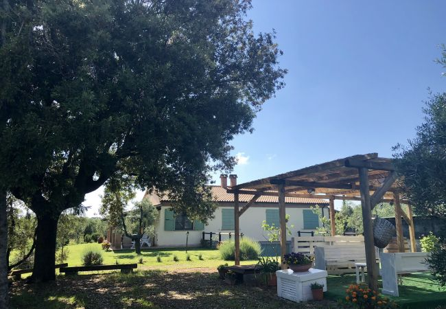 Apartment in Cecina - Casa Rosina Cecina Toscana Tour