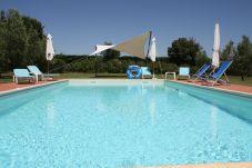 Apartment in Bibbona - Agriturismo a Bibbona con piscina Edy