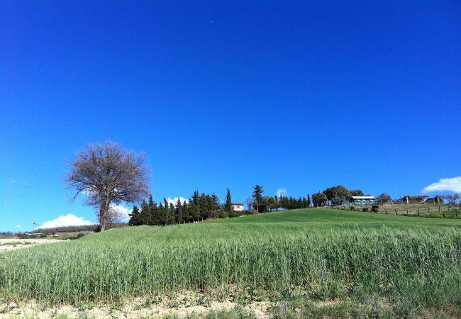 House in Casale Marittimo - Casa Barbara Vista Mare Toscana Tour