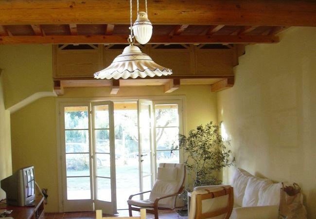 House in Cecina - Casa Raggio di Sole Cecina