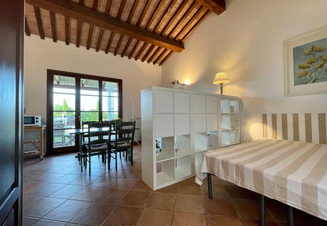 Apartment in Cecina - Open Space near the sea Toscana Tour Ale
