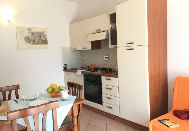 Apartment in Montescudaio - Casina Elena Montescudaio