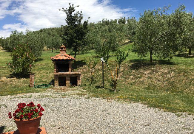 Farm stay in Ponteginori - Agriturismo Alto 8 Toscana Tour
