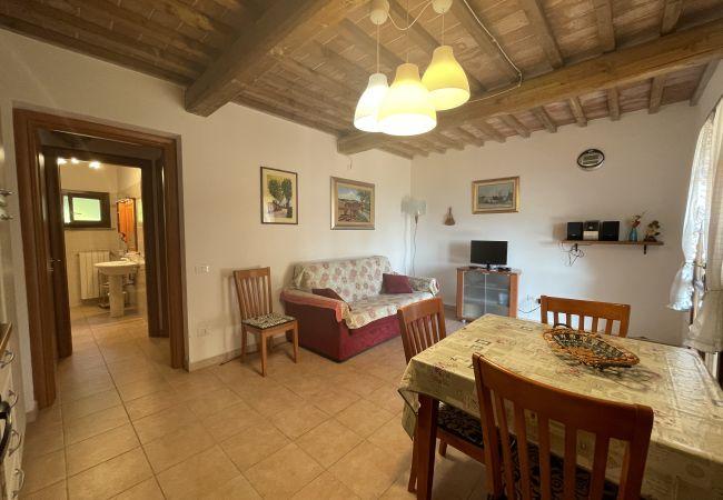 Apartment in Casale Marittimo - La Ninfea sea view Toscana Tour
