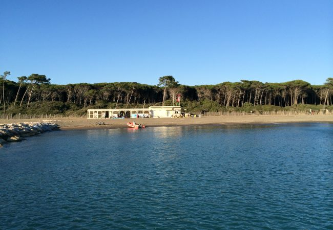 Villa in Riparbella - Villa Fontespadini con piscina a 10 km dal mare