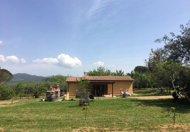in Montescudaio - Casina Buon Risveglio con giardino recintato