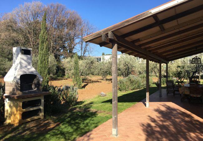 Ferienwohnung in Cecina - Casa Rosina ingresso indipendente 3 vani 6 km mare