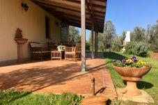 Ferienwohnung in Cecina - Casa Rosina ingresso indipendente 3...