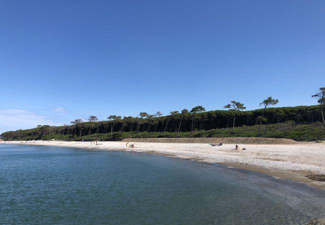 Ferienwohnung in Riparbella - Vista mare trilocale con ingresso indipendente