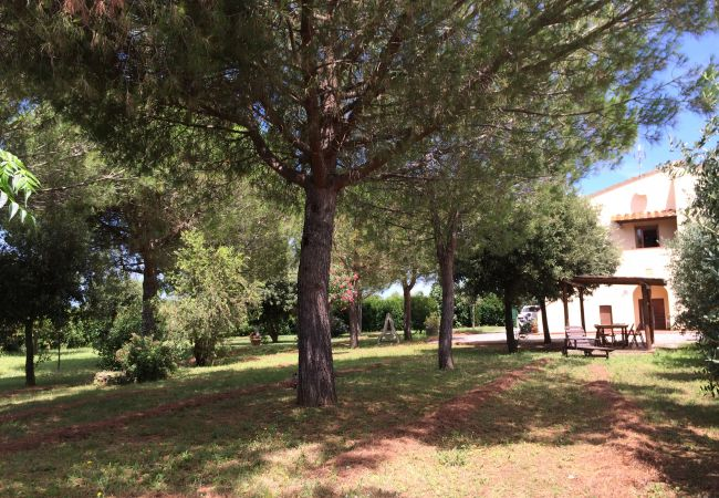 Ferienwohnung in Bibbona - Piscina, 3 vani, giardino recintato 4 km dal mare