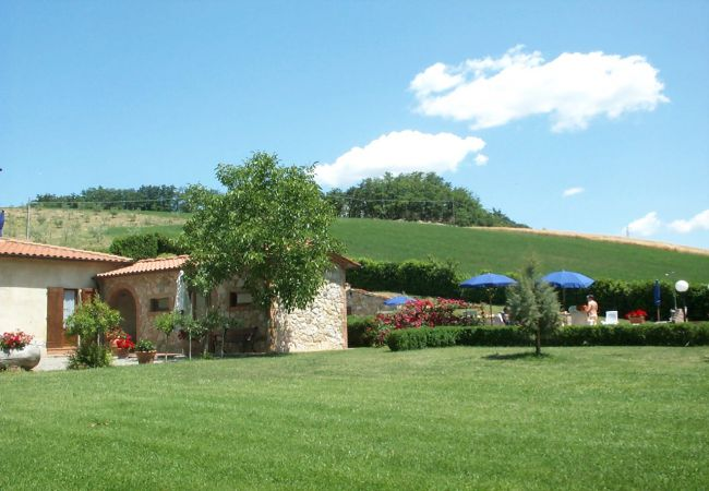 Ferienwohnung in Ponteginori - Agriturismo Anna 5 con Piscina Wi-Fi