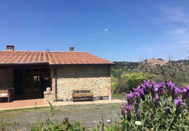 Ferienhaus in Casale Marittimo - Casa delle Conchiglie indipendente animali ammessi