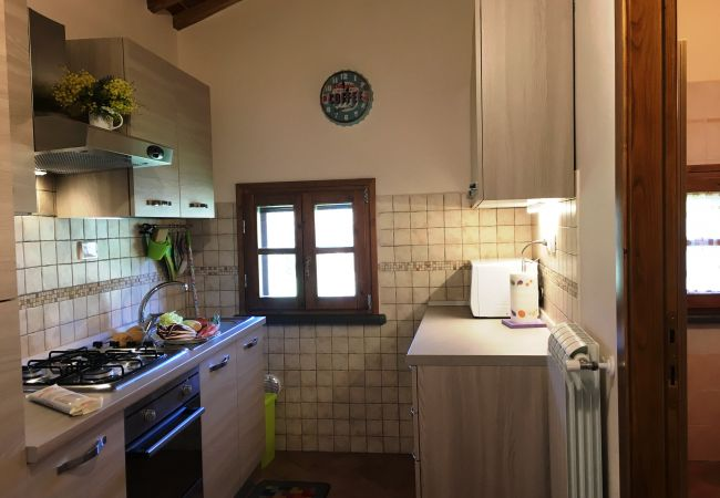 Ferienhaus in Montescudaio - Casa indipendente con ampio giardino recintato