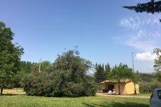 Ferienhaus in Montescudaio - Casina Buon Risveglio con giardino...